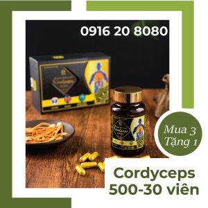 Đông trùng hạ thảo Cordyceps 500