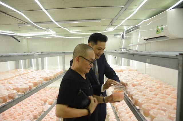 Nghệ sĩ Xuân Hinh thăm quan khu nuôi trồng đông trùng hạ thảo Mailands tại 169 Nguyễn Ngọc Vũ, Hà Nội