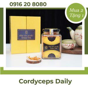 Đông trùng hạ thảo Cordyceps Daily
