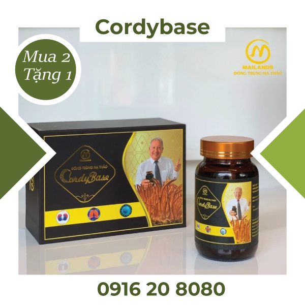 Đông trùng hạ thảo CordyBase